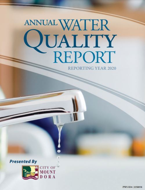 2020 annual quality water report