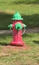 pink hydrant