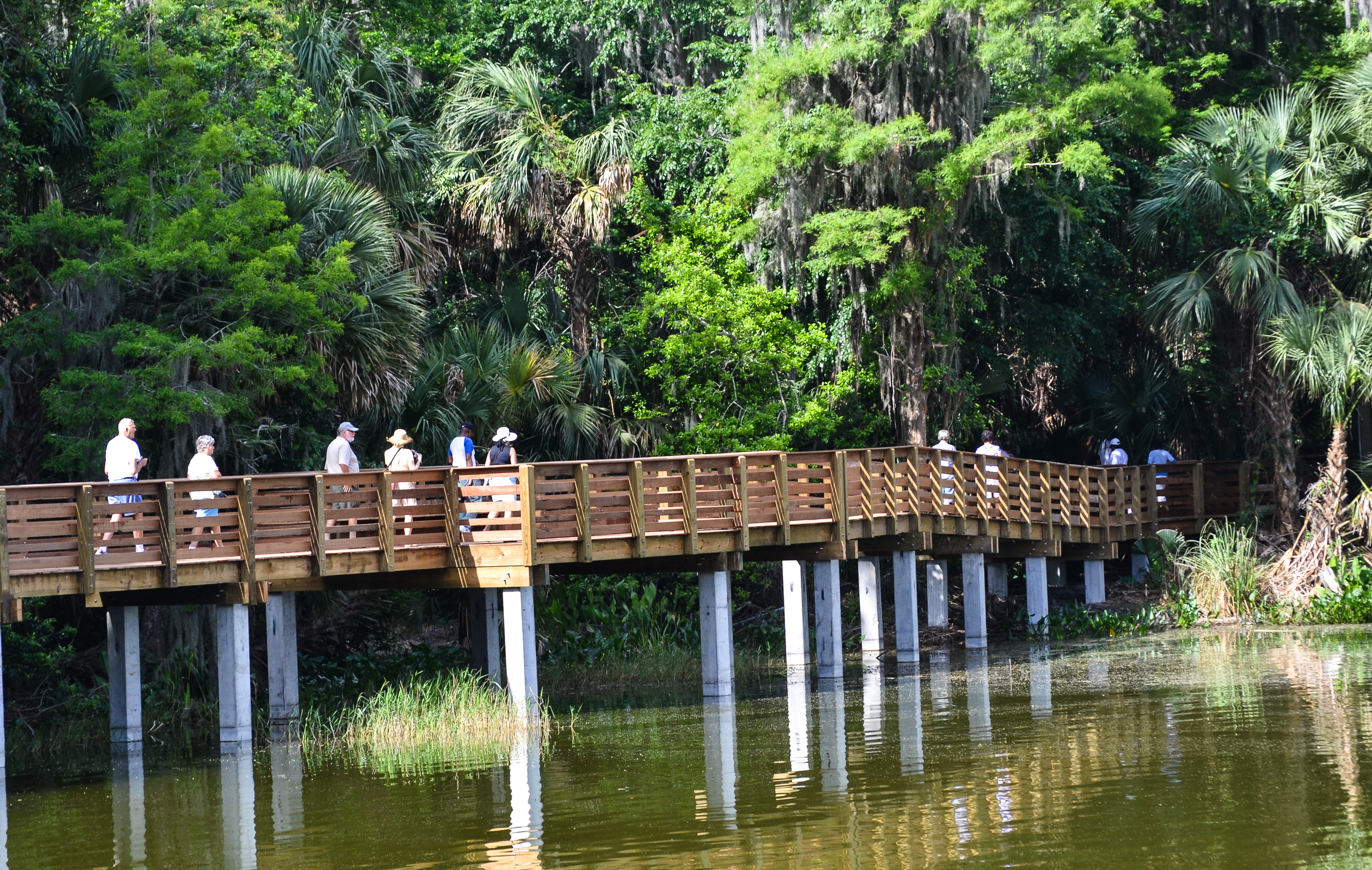 Palm Island Park Boardwalk
